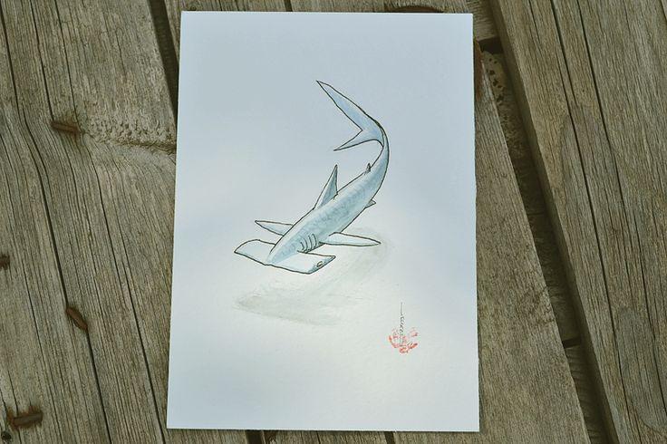 Requin marteau à l'aquarelle par Mathieu Larno. #requin #shark #aquarelle #watercolor