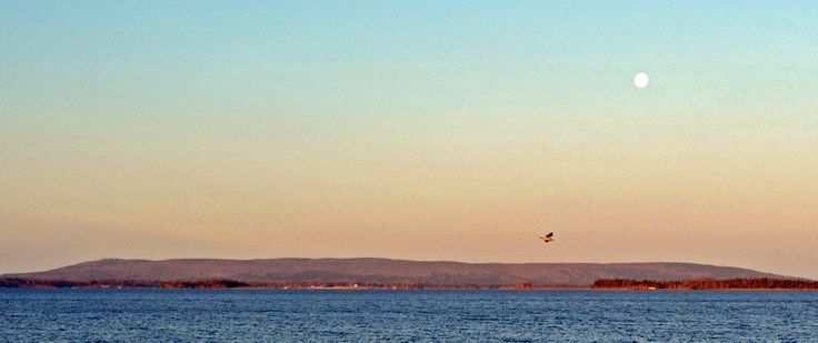 See what's happening on the Bras d'Or! 'Like' us on Facebook: https://www.facebook.com/BrasdOrLife?ref=hl