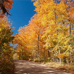Somewhere in America, Fall Foliage: Thursday, October 4