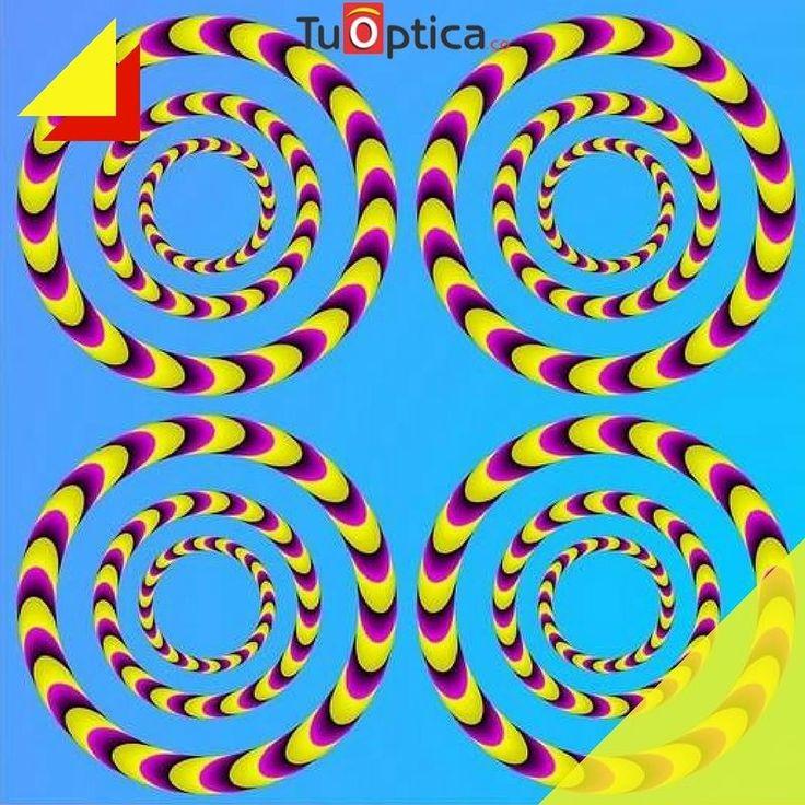 #EjercicioVisual Cual imagen gira a la derecha y cuales a la izquierda?  #economia #calidad #estilo #gafasniños #GafasColombia #Funny #Monturas #optica