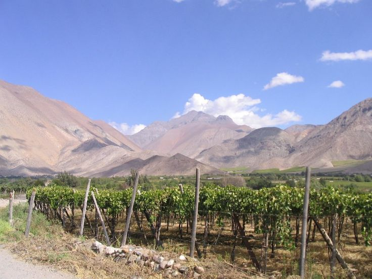 El Monte Chile - donde nace la Patria!!  Where the Republic of Chile was born!  It's amazing with all this good wine they found time to start a war with Spain!
