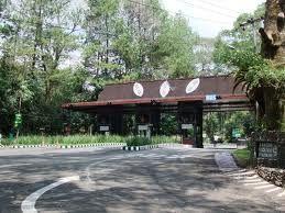 PAKET WISATA TOUR TAMAN SAFARI BOGOR | sewa rental mobil Jakarta Depok Bogor Tangerang