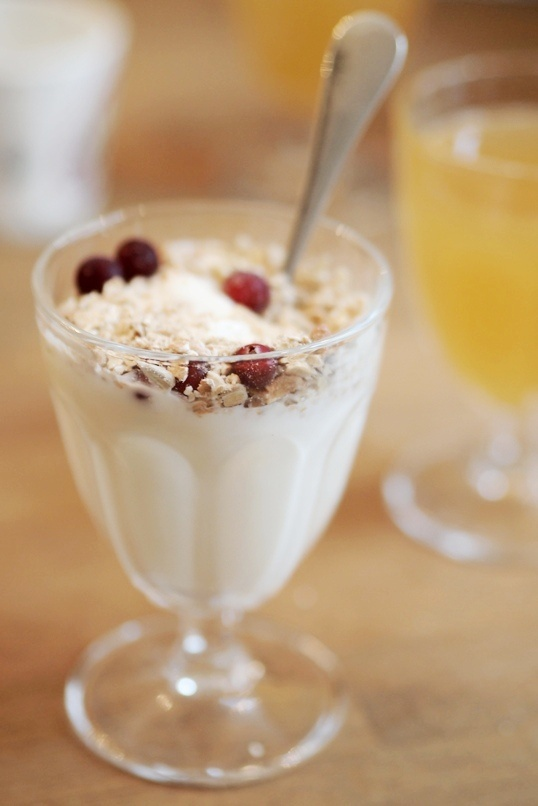 Organic yogurt. Pupulandia | Trendi