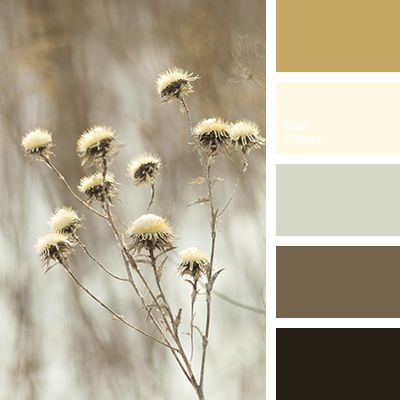 beige, black color, bright mustard, brown color, gray color, gray-brown, mustard, shades of brown, winter color combination, winter palette, winter palette 2016.