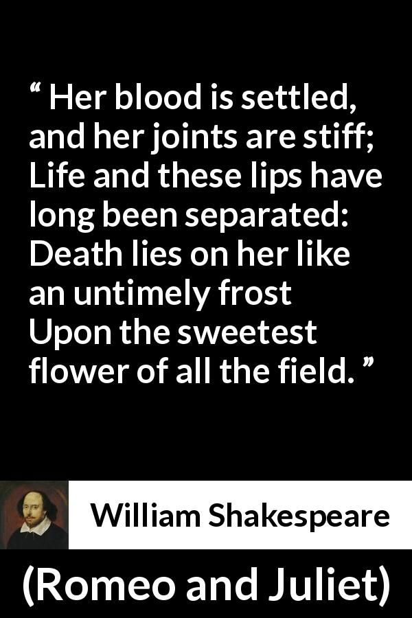 25 best romeo and juliet quotes on pinterest william