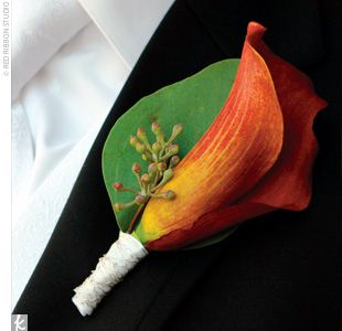 Orange Calla Boutonniere: Orange Calla, Boutonnieres Ideas, Boutonni Ideas, Finding Orange, Grooms Boutonnieres, Calla Lilies Boutonnieres, Parties Flowers, Orange Boutonnieres, Calla Boutonni