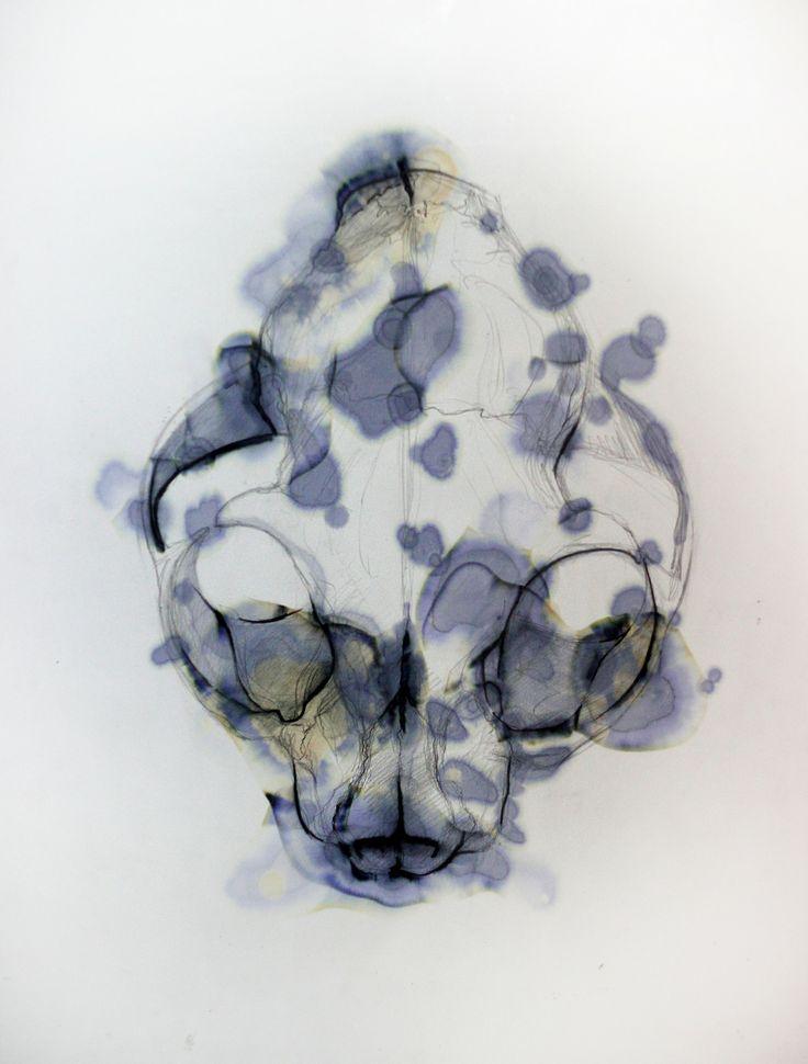 skull nr 1