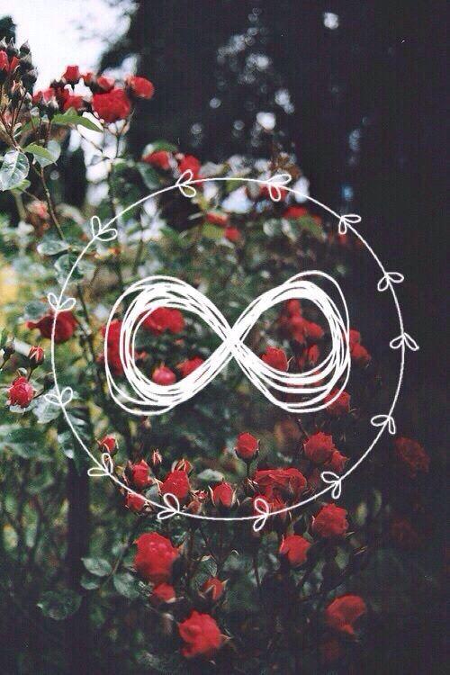 Imagem de flowers, wallpaper, and infinity