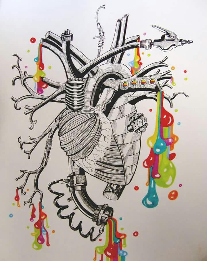436 Best Heart Images On Pinterest Anatomical Heart Human Heart
