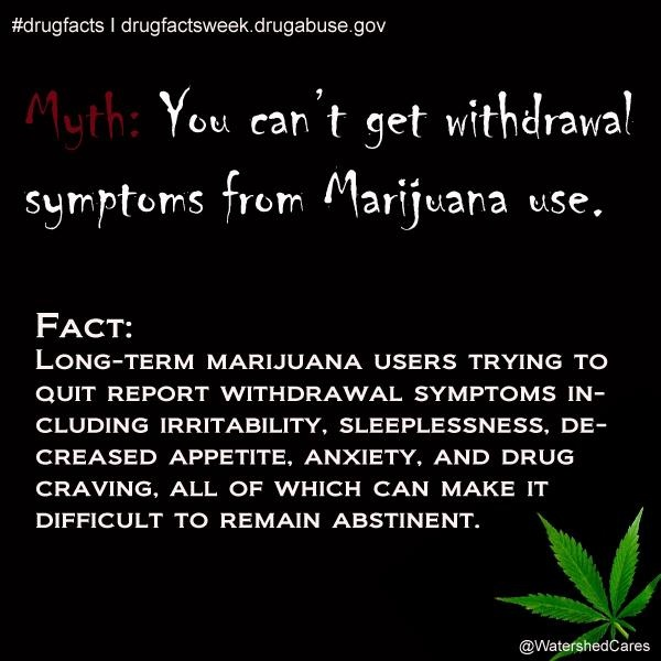 disproving myths on marijuana use Does smoking marijuana make you paranoid here are the facts about every ( and we do mean every) weed myth you've ever heard.