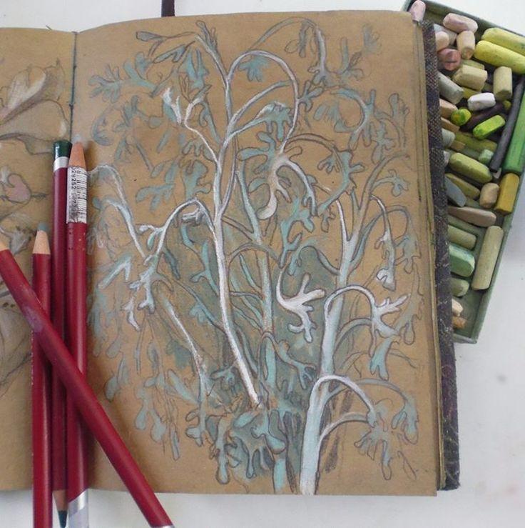 Floral sketch, pastel pencils, soft pastels and self-made sketchbook
