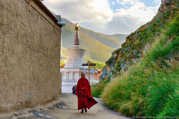 Buddhista szerzetes, Kanszu tartomány, Kína, 2017 Buddhist monk, Gansu province, China, 2017 Photo: Somogyi Márk - www.somogyimark.hu #china #monk #buddhism