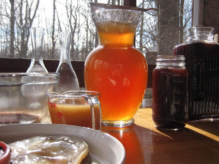 Whether you should drink kombucha or not all depends on your body's ability to deal with 3 key ingredients that typically go into every batch.