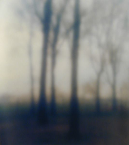 """New Years Day"""" #5002, 2003, by Bill Jacobson. Image courtesy of Julie Saul Gallery, New York, NY"""