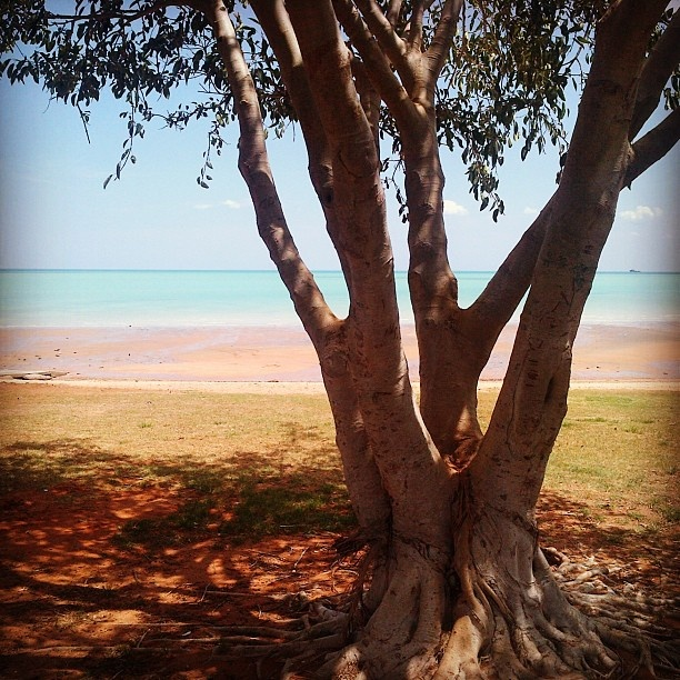 The beautiful Broome (WA) where we are located. This was taken at Town Beach.