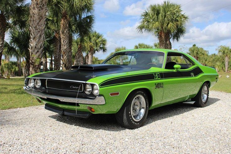 Dodge Challenger Muscle Car: Über 40 Sammlungen   – Whips
