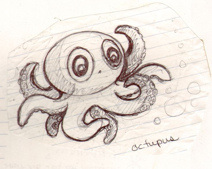 17 best ideas about octopus sketch on pinterest octopus