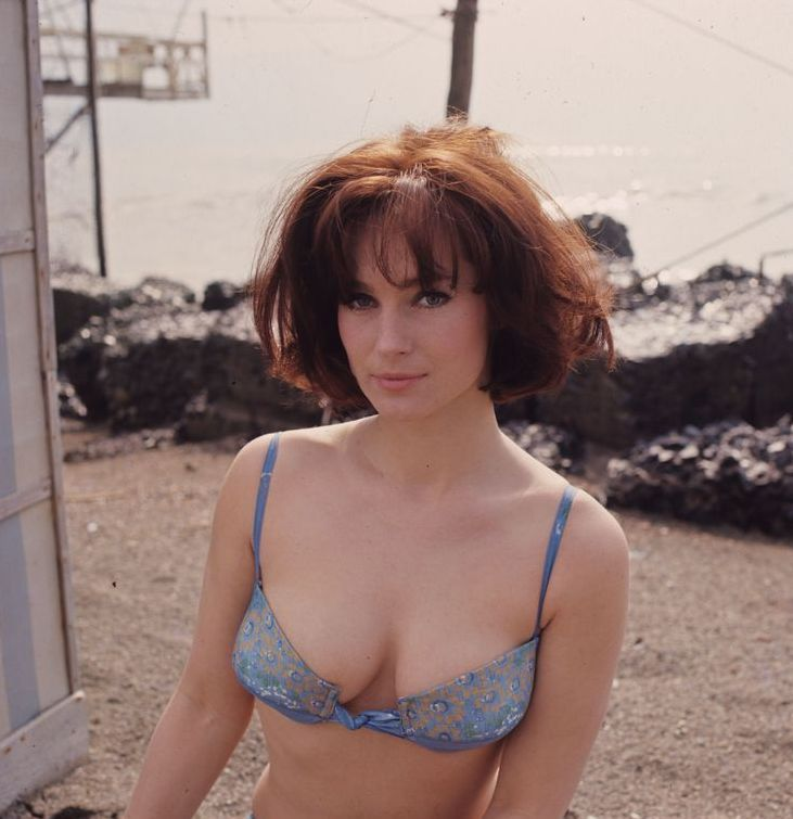 The 17 Best Shirley Anne Field Images On Pinterest