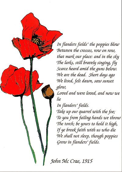 essay on in flanders fields Example of how to write a literary response essay.