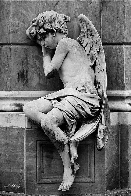 Ángel - Cementerio de la Recoleta   Sigfrid López   Flickr