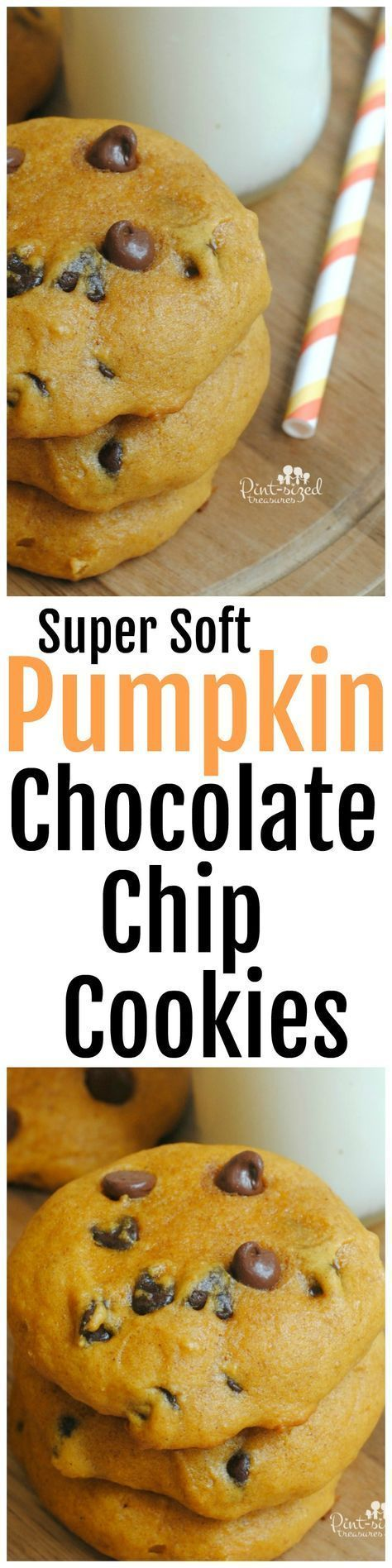 Super soft Pumpkin Chocolate chip cookies is the perfect recipe to bring pumpkin pie and chocolate cookie fans together! This super soft cookie wraps classic fave pumpkin flavors together with tiny bits of luscious chocolate. Baked for the perfect amount of time and mixed just right, these cookies turn out gorgeous, super soft and ready to nibble!