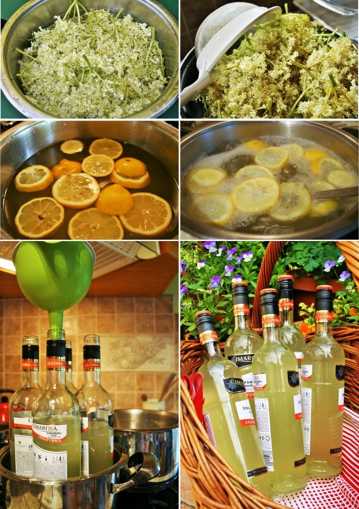 Homemade elderflower syrup recipe and how to prepare it