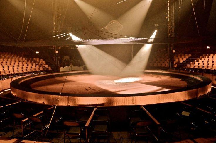 The Spotlight (circus) by Sofia Castellanos ©