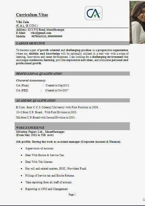 cv help personal statement Sample Template Example of Excellent - finance student resume