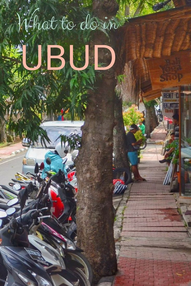 What to do in Ubud (Bali, Indonesia).