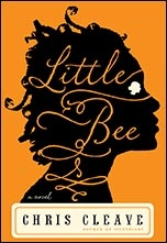 Little Bee- great book