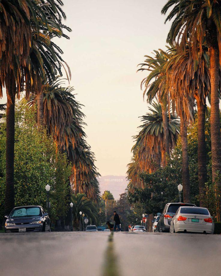 лос анджелес фото туристов выборы президента