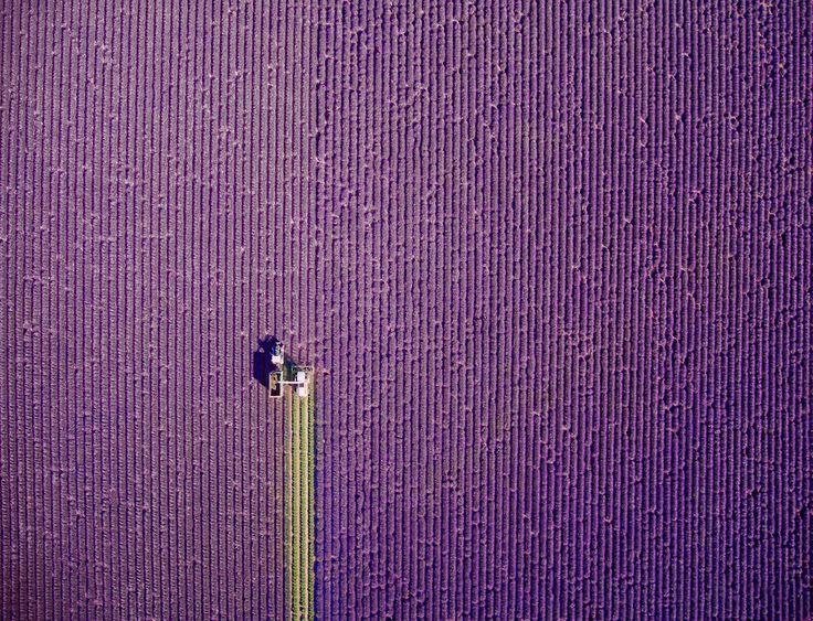 Le foto più belle del 2017 scattate dall'alto con i droni. Il sito francese Dronestagram ha annunciato le foto vincitrici del quarto International Drone Photography Contest, un concorso a premi organizzato in collaborazione con National Geographic