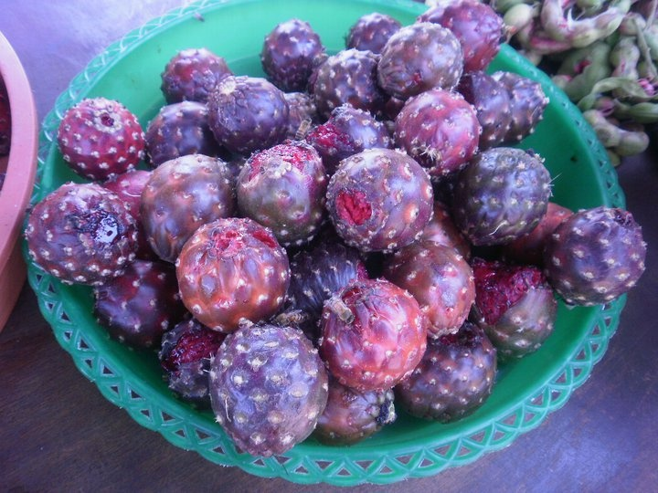 Guamuchil Fruta Ex 243 Tica De Pajacuar 225 N Mich Mex Fruta