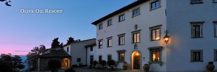 The Resort - VILLA CAMPESTRI - Olive Oil Resort - hotel in florence, vicchio di mugello