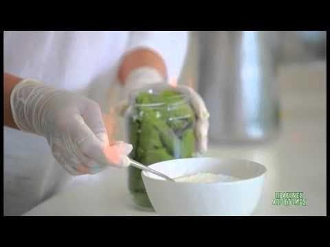Συντήρηση αμπελόφυλλων & παντζαριού - YouTube