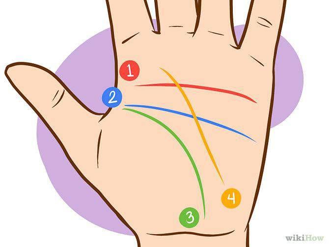 Signes et lignes de la main : comment les lire