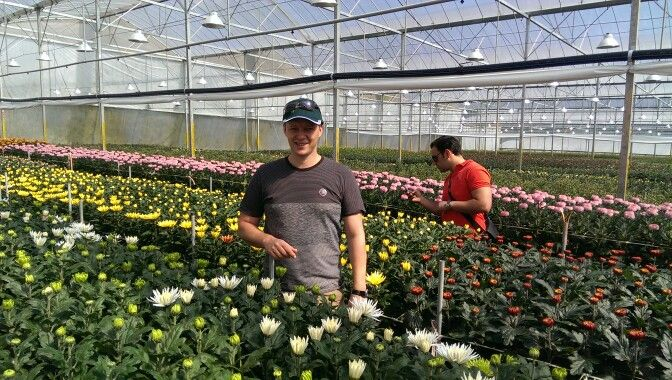 Visiting Chrysants grower.