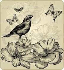 Resultado de imagen para aves vector