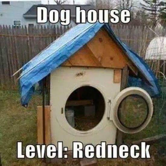 17 Best Images About Dumb Rednecks On Pinterest