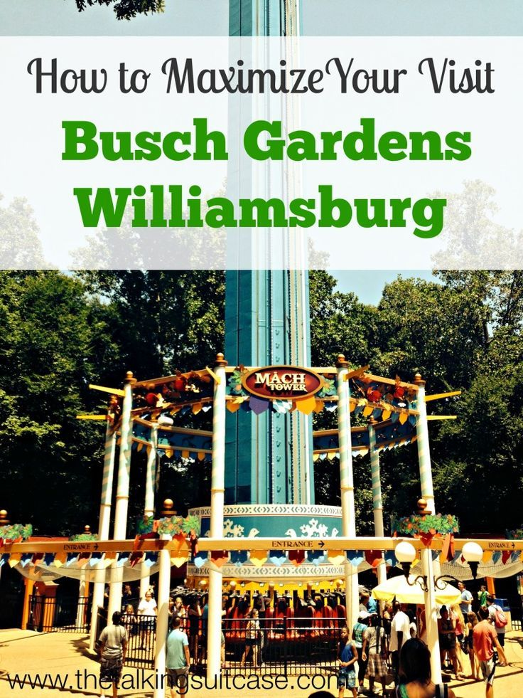 40 best busch gardens williamsburg images on pinterest - Busch gardens williamsburg vacation packages ...