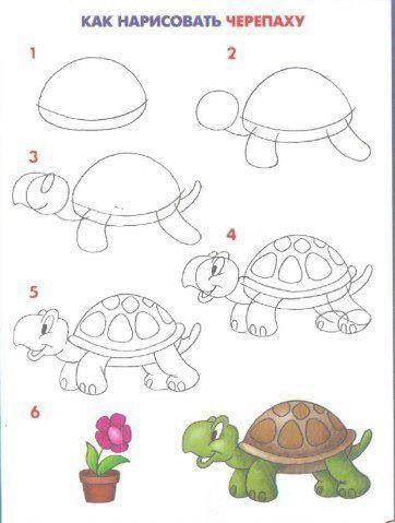 Les 25 meilleures id es de la cat gorie tortue dessin sur - Comment dessiner une tortue ...