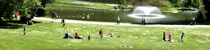 Villa Serra di Comago (#Genova  #Liguria) il suo Parco è il paradiso dei bambini: tranquillità e spazi aperti curati; un laghetto con numerosissime papere,  cigni, pavoni e tartarughe. Ci sono i prati per prendere il sole mentre con un occhio si vigila l'andirivieni dei bambini. Ci sono i sentieri per le passeggiate, c'è un ampio parco giochi, l'area pic-nic, il baretto per le merende.