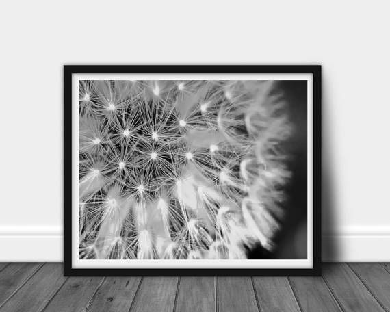 Dandelion nursery black white dandelion, botanical #art #photography @EtsyMktgTool http://etsy.me/2iGx1S1 #minimalist #modernprint
