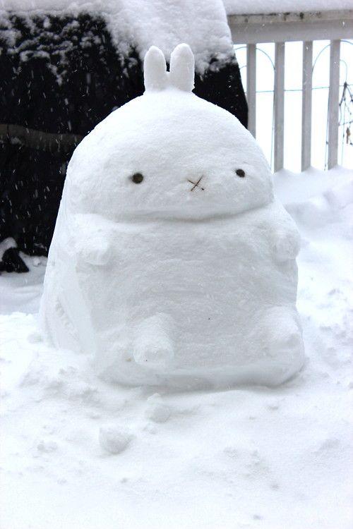 Coniglio di neve