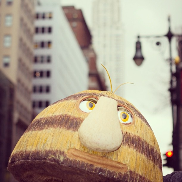 Grug in New York City