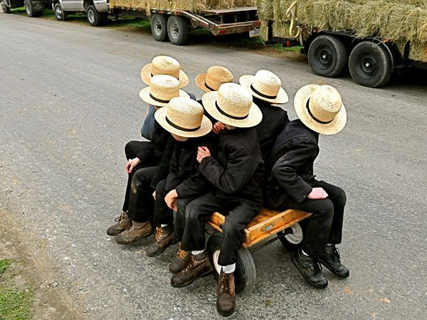 Amish Boys (Pensilvânia, Estados Unidos) -   Meninos amish andando de carroça no Peach Bottom, na Pensilvânia, Estados Unidos.