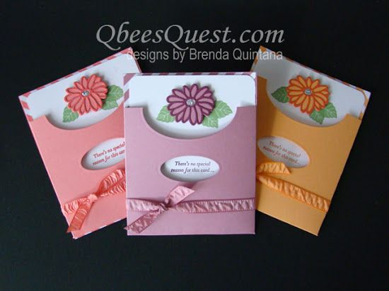 2017  VIDEO  Qbee's Quest: Special Reason Pocket Card