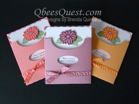 2017  VIDEO  Qbee's Quest: Special Reason Pocket Card
