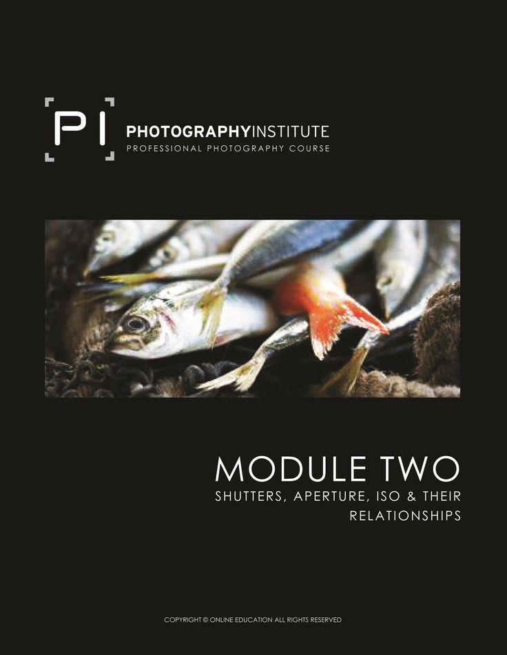 Module 2  #photography #thephotographyinstitute #pi #training #photographycourse #education
