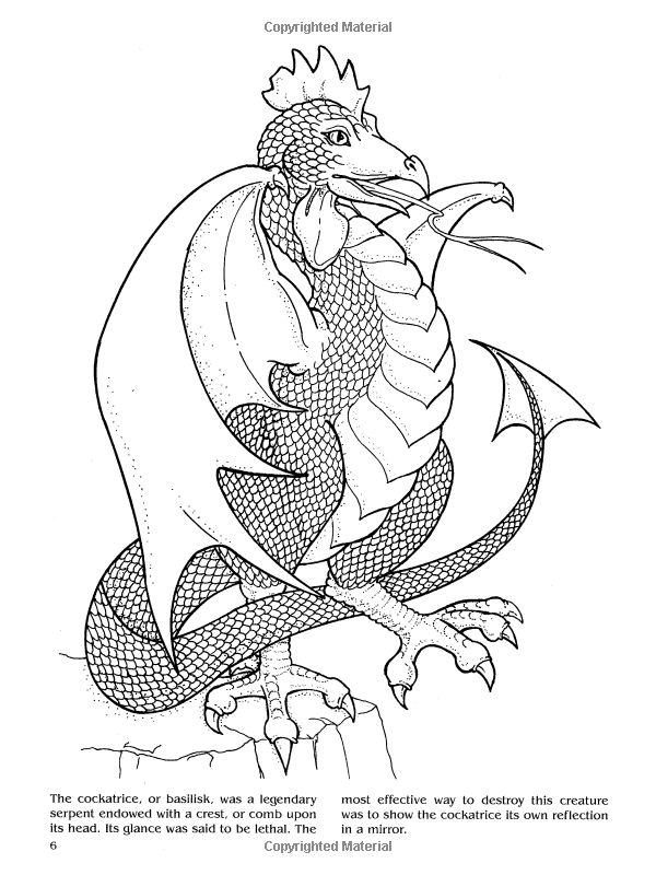 143 Best Coloriage Dragon Images On Pinterest